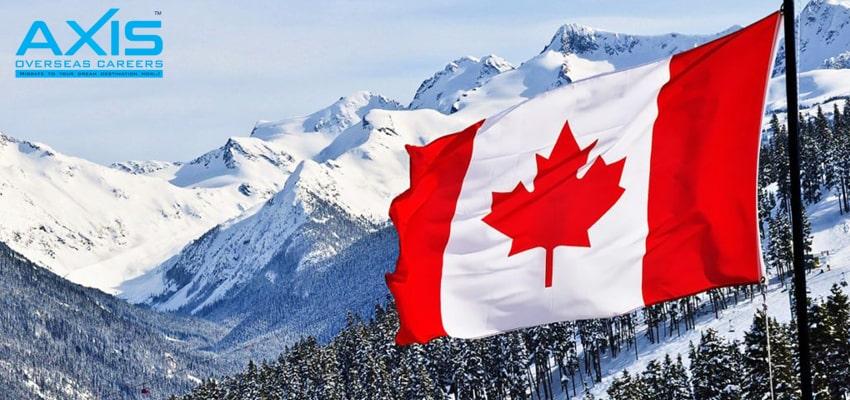 Canada Immigration Consultants in Aluva